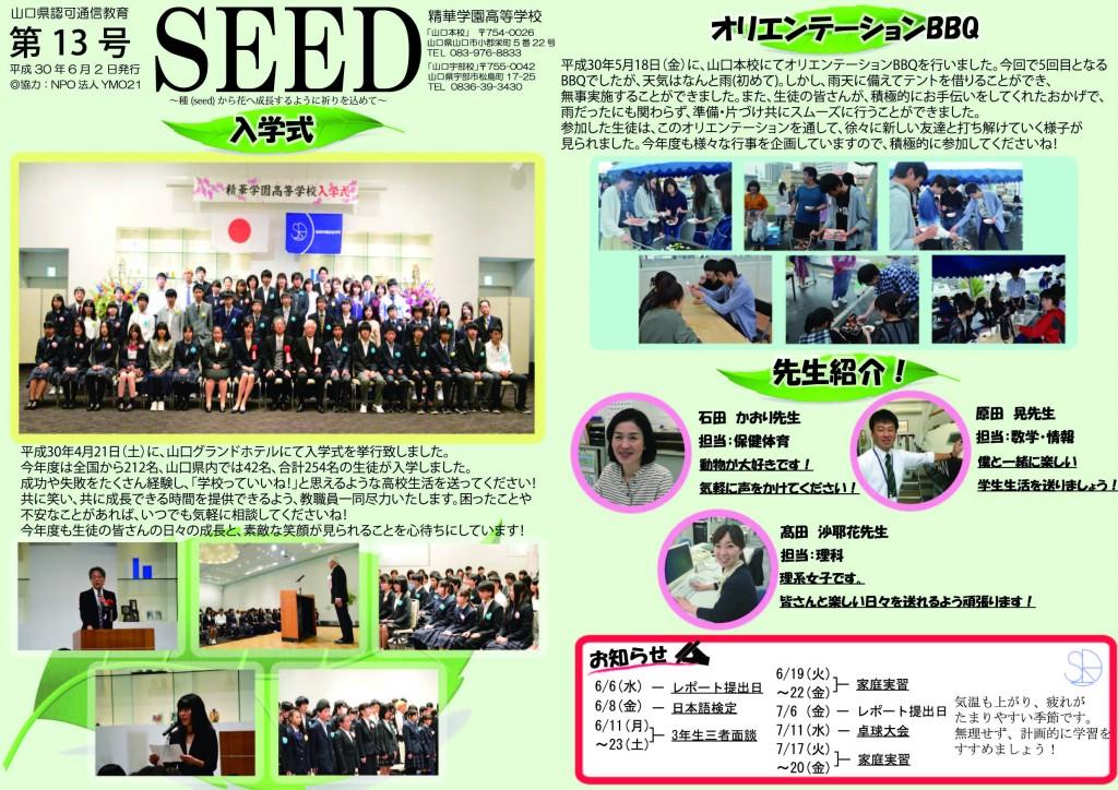 seed第13号アウトライン